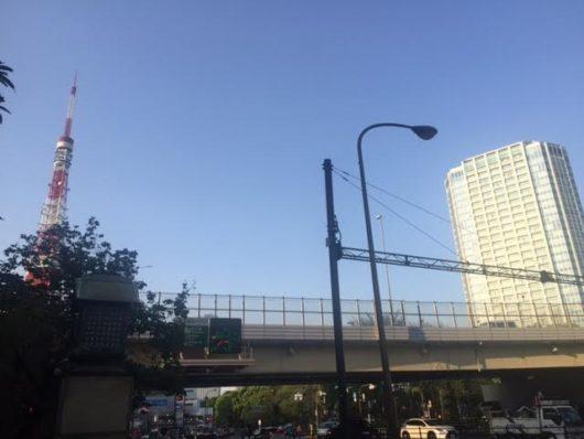 東京タワーとザ・プリンスパークタワー東京