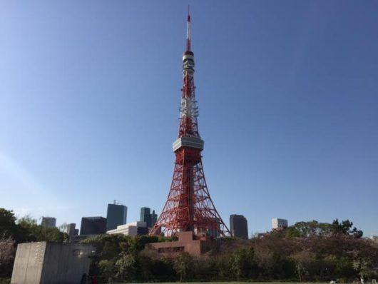 東京タワー(ザ・プリンスパークタワー東京裏庭より)