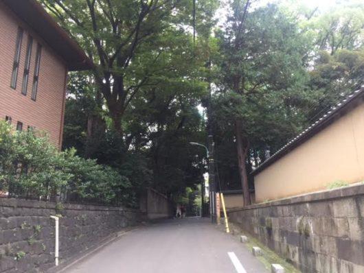 元氷川坂。左側が氷川神社。
