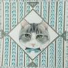 猫作品(3)